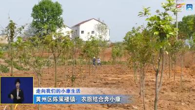 黄州区陈策楼镇:农旅结合奔小康