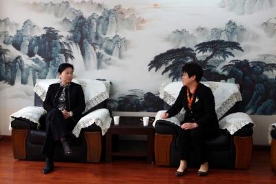 王艳玲在湖北省社科联宣讲调研  召开省社科界深入学习党的十九大精神座谈会