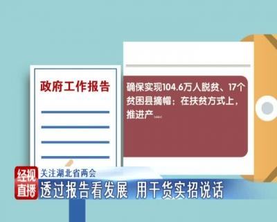 V视 | 关注湖北省两会:透过报告看发展 用干货实招说话