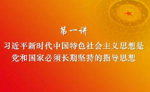 习近平新时代中国特色社会主义思想三十讲(第一讲)