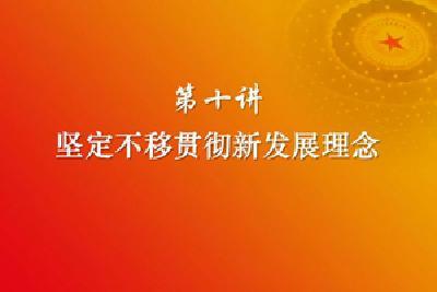 习近平新时代中国特色社会主义思想三十讲(第十讲)