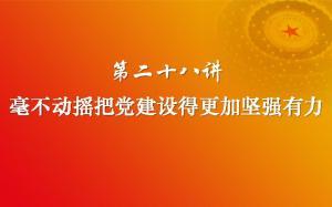 习近平新时代中国特色社会主义思想三十讲(第二十八讲)