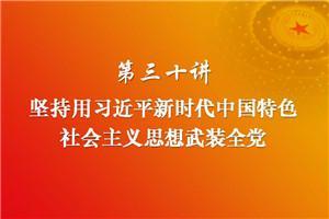 习近平新时代中国特色社会主义思想三十讲(第三十讲)