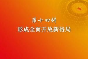 习近平新时代中国特色社会主义思想三十讲(第十四讲)