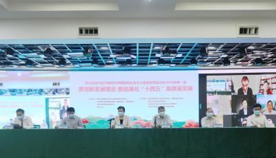 学习贯彻习近平新时代中国特色社会主义思想系列研讨会在汉召开
