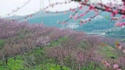 """湖北这5村入围""""中国美丽休闲乡村"""",看看有你的家乡吗?"""