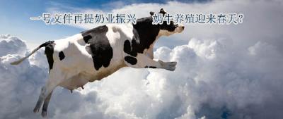 一号文件再提奶业振兴  奶牛养殖迎来春天?
