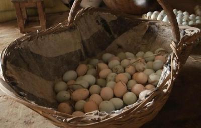 """重回""""三""""字头!消费淡季到来 鸡蛋价格猛降"""