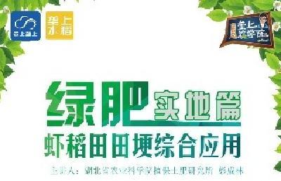 【视频】水稻课堂:虾稻田田埂综合应用