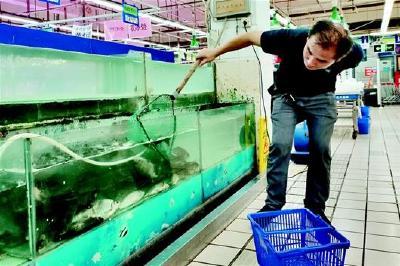 """存货减少引发涨价 武汉今夏淡水鱼市场难""""淡定"""""""