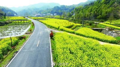 """国办印发通知:为推进""""四好农村路""""建设提供有力保障"""