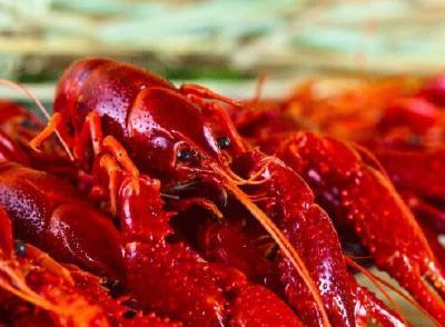 螺蛳壳里做道场,小龙虾吃出大产业