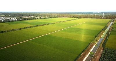 【植保】中国禁限用农药产品名单!施用时注意啥
