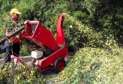 武汉首家园林垃圾处理站投用:树枝草屑变有机肥料