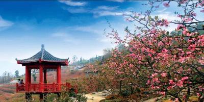 定了!首届荆楚乡村文化旅游节主题标识,是这个样子