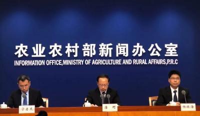 农业农村部权威解答蔬菜、水果、玉米、小麦等价格走向!