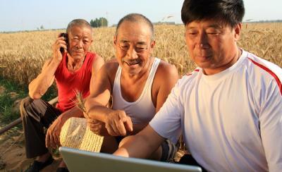公示价格、网上卖粮……这些举措,让卖粮农民更便捷、更舒心!