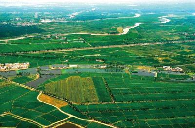 """荆州区太湖农场获领首张国有农用地""""身份证"""""""