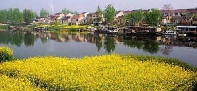 """洪湖市汊河镇:土地流转 """"空壳村""""变""""实体村"""""""