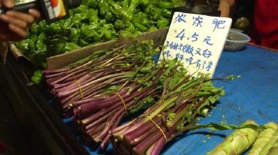 红菜薹新鲜上市,价格销量都比去年同期低,原因出在哪?