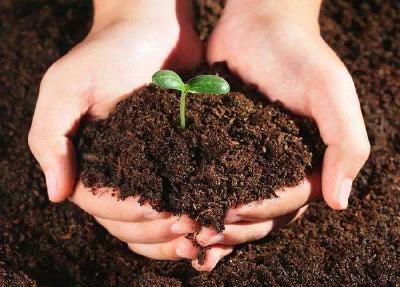 肥料种类多,全施成本高,到底值不值?少施行不行?