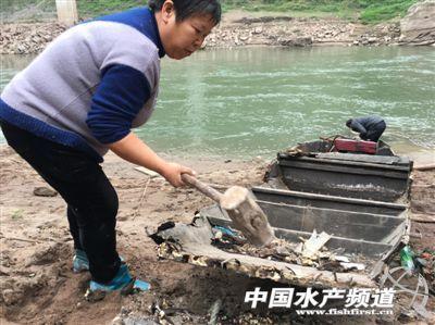 """最后的长江渔民:""""再捕下去,子孙后代无鱼可捕"""""""