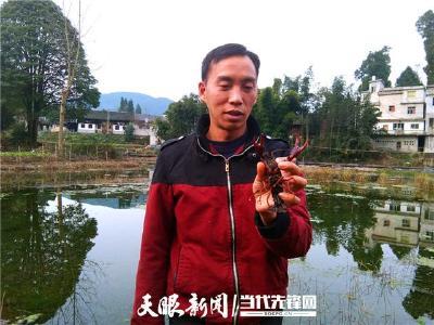 励志!残疾人朱晓刚的小龙虾养殖路