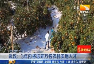 武汉:3年内将培养万名农村实用人才
