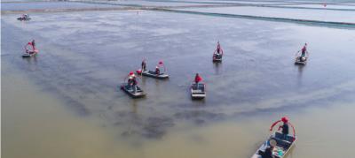 """小龙虾的""""红利""""时期来临,冬季应该如何养殖,才能争取年后出售"""