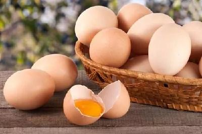 """鸡蛋价格大跌近30%,如何才能""""蛋""""定?"""