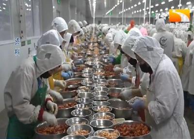 刘克雄:探索农村改革创新 争做乡村振兴排头兵
