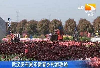 武汉发布鼠年新春乡村游攻略