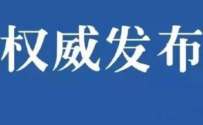 中央赴湖北指导组:千方百计增强收治能力