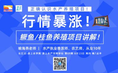 长江云垄上农学院 | 水产讲坛:鳜鱼/桂鱼养殖项目讲解!(语音)