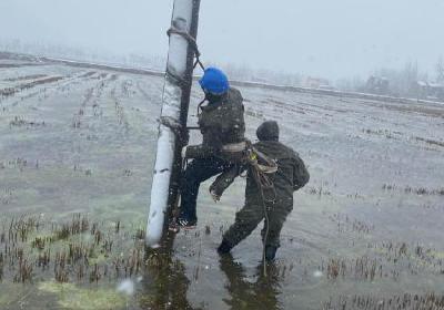 """战""""疫""""群英谱丨直击风雪雨交加中的湖北乡镇电力人"""