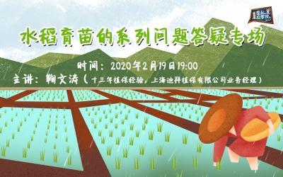 【课程预告】备战春耕!2020年水稻育苗问题答疑专场!