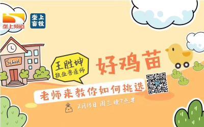 长江云垄上农学院   畜牧讲坛:养殖最关键的第一步:如何挑选好鸡苗(语音)