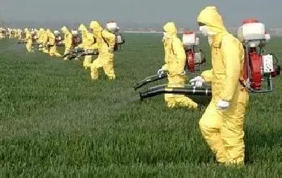 小麦田常用禾本科除草剂各自的优缺点及注意事项!