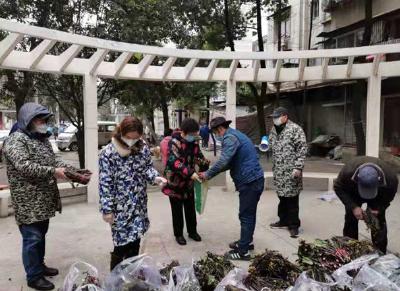 热心村民为武汉社区捐赠3000斤爱心红菜薹   众志成城抗疫情 湖北乡村在行动