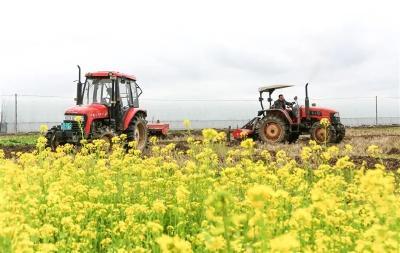 惊蛰 | 应对气候、精准备肥、农机调试,乡亲们都做好了么?