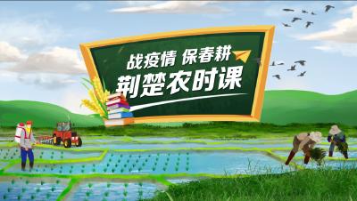 荆楚农时课第32讲:春茶生产管理技术及茶叶加工相关准备工作