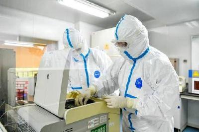 满足应检尽检愿检尽检,湖北单日最大核酸检测达8.9万人份