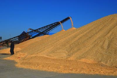 今年粮食能够实现稳产保供 农产品流通基本恢复正常 价格稳中有跌