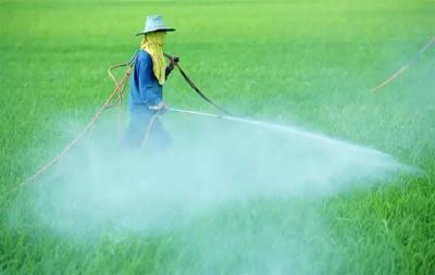 每次打药都加叶面肥?那就大错特错了!农药肥料顺序很重要