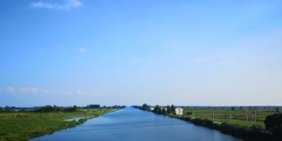 湖北省2020年6月水产养殖病害预测预报