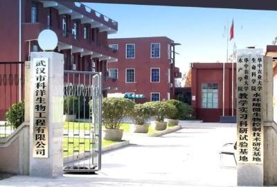 《武汉活鱼》农村水产电商有关单位(企业)推介之14:武汉市科洋生物工程有限公司