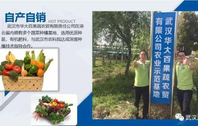 《武汉活鱼》农村水产电商有关单位(企业)推介之19:武汉市华大百果蔬农贸有限责任公司