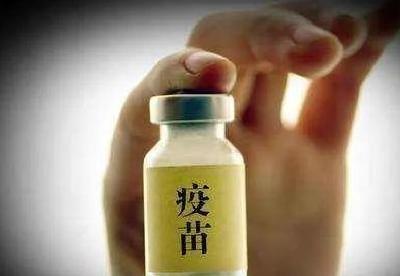 重庆破获全国首例制售假冒非洲猪瘟疫苗案,造成上千万元经济损失