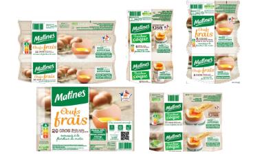 因沙门氏菌污染,法国召回50余万枚鸡蛋