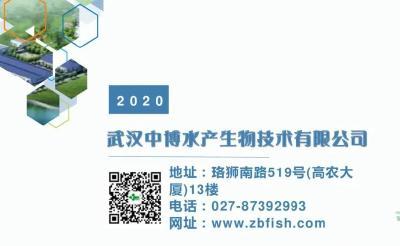 《武汉活鱼》农村水产电商有关单位(企业)推介之23:武汉中博水产生物技术有限公司